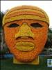 Face du Citron
